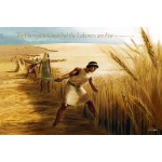 The Harvest is Great 24x36 Poster